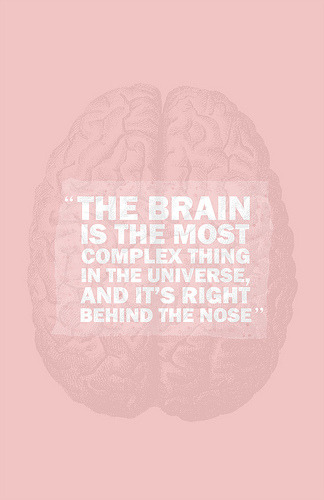 aclockworkturquoise:  the brain (by miekala cangelosi)