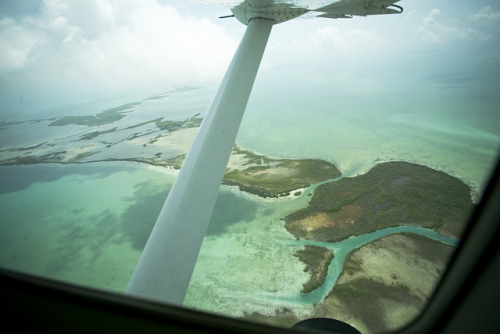Belize From the Air by adiaphane on Flickr.
