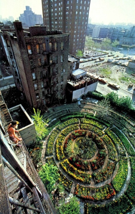 garden of eden, new york city