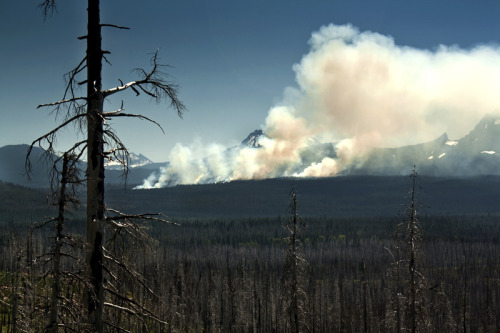aridderb:  Wildfire near Mt. Hood, Oregon