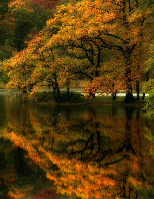 sweetwillowtree:  beautiful!! bettyboop57:                          Grasmere, English Lake District, Cumbria, England.