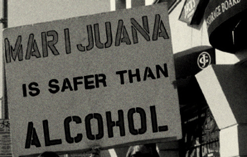 iamthesorrowagain:  Marijuana is safer than sugar.  Marijuana is safer than airplanes.