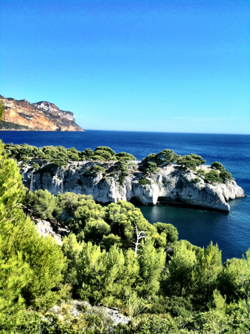Cassis, France. A long hike to Calanque #3 over several mountains, and several swims (and of course, several bakery trips).