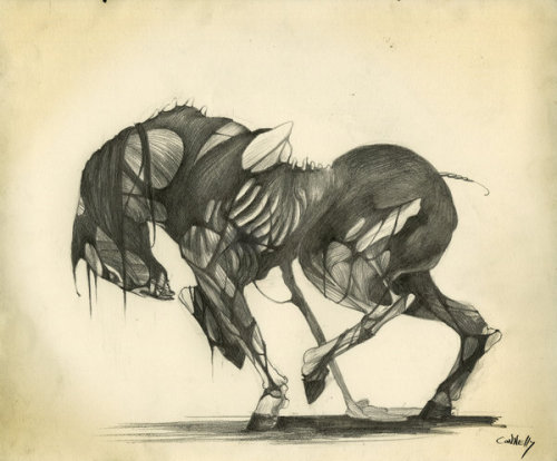 inkwings:  Zombie Horse by ~WolfesClothing