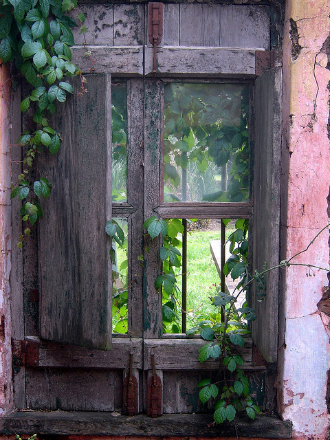 agoodthinghappened:  Eclectic Window / Argentina by JohannRela on Flickr.