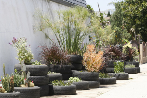 The Tire Garden at Dandelion Ranch, a Los Angeles flower shop.