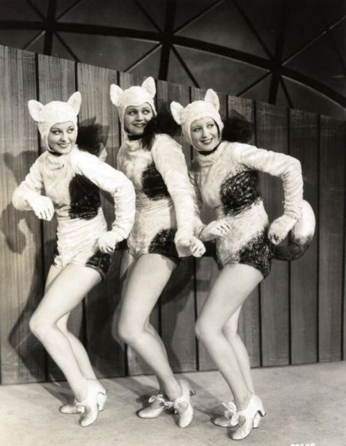 "Busby Berkeley chorus cat-girls from the ""Back Yard Fence"" number in ""Footlight Parade"" - 1933"