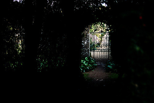 annanyff:  Secret Garden (by jamietorrance01)