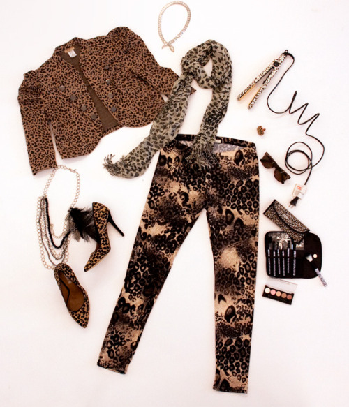fashiontofigure:  WELCOME TO THE JUNGLE Cropped Animal Jacket (FTF - $24) | Snake Necklace (FTF - $20) | Animal Scarf (Select FTF stores - $10) | Leopard Flat Iron (Amazon - $79) | Zebra Ring (FTF - Sold Out) | Sunglasses (Betsy Johnson) | Brushsets (Coming soon to FTF) | Eyeshadow (FTF Stores - $3)| Feather Necklace (FTF - $18) | Mease Pointy Heels (Aldo - $100) | Cheetah Leggings (FTF - $20)