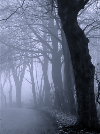 ominousplaces:  The Mist. By feen_kind.