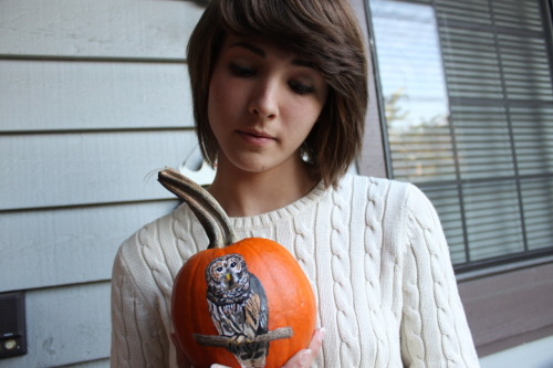 I really want to paint pumpkins again this year, and maybe give them as gifts.