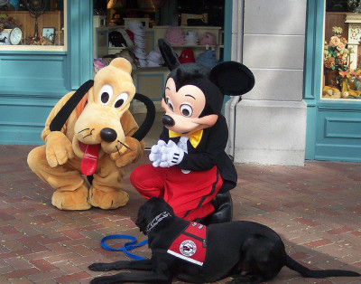 zip-a-dee-disney:  Mickey and Pluto by MickeyMF on Flickr.