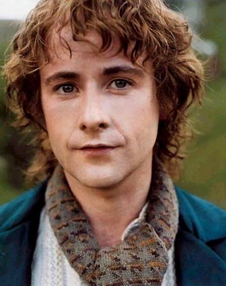 Billy Boyd as Pippin Took