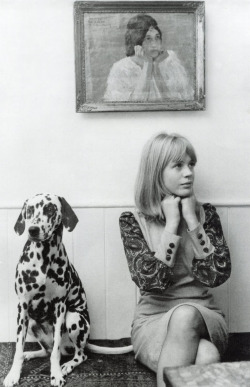 Marianne Faithfull with her pet Dalmatian, 1964. Photograph by John Pratt/Getty Images Read more…