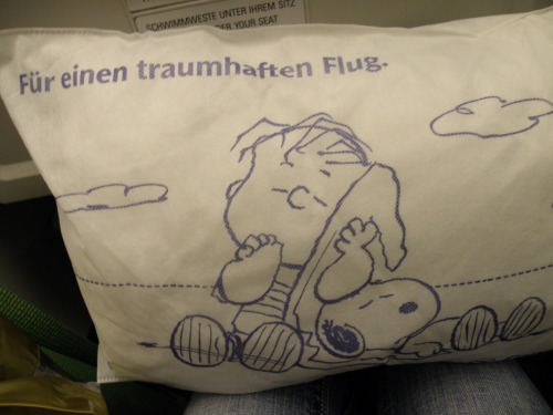 bumbleful:  My pillow on our Condor flight (Translation: Have one dreamy flight)  I want this pillow.
