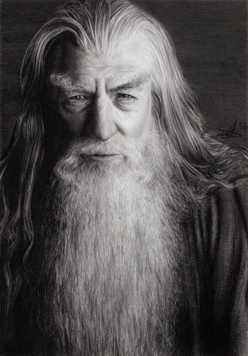 Gandalf the Grey by =D17rulez