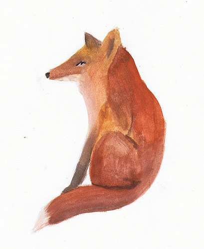 ddylanjoness:  red fox (by pisceo)