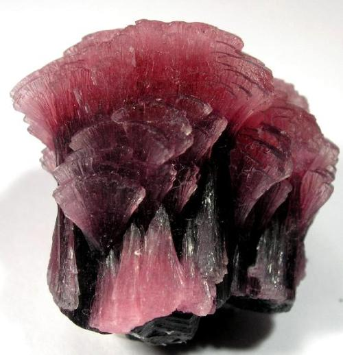 gem-myriad:  Elbaite represents a love of humanity and humanitarianism. It is worn to promote sympathy towards others. It carries the virtue of unconditional love and friendship. In fact, it radiates the highest amount of love of all the different colored tourmalines. It's also meant for people who bear a special injury in their hearts as it encourages love and gently disperses emotional pain and dissolves disruptive feelings. It calms the negative emotions that often upset relationships Metaphysical: Primary Chakra: Heart,  Astrological sign(s): libra Vibration: Number 9