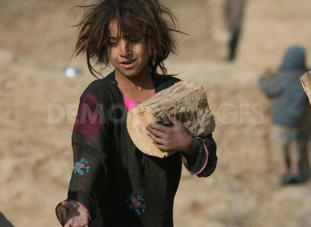 Afghan girl picking up wood for fire.
