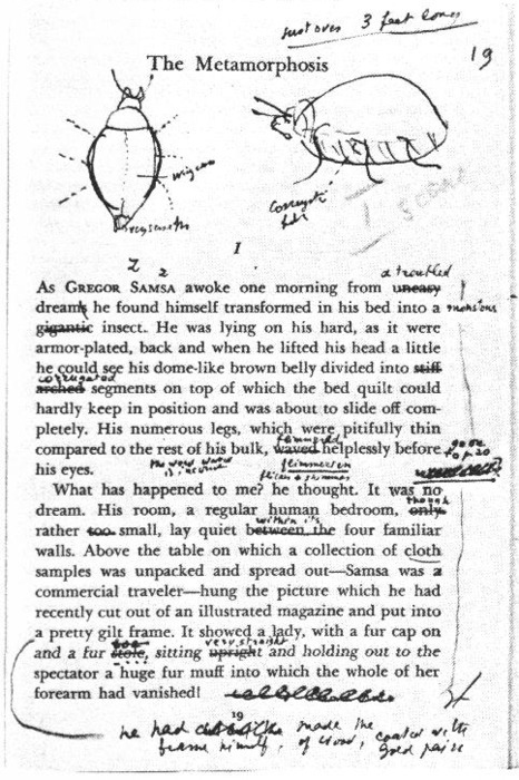 "theepitomeofsimplicite:   Vladimir Nabokov's drawings and writing on Franz Kafka's The Metamorphosis.   My sister and I were just talking about Kafka and the Metamorphosis. Isn't it funny to find it here? We then engaged to a long conversation remembering how it was to be a french high school student and the books we had to dissect. I read this one in french and german. We were telling each other which book gave us the biggest trouble to analyze. As she said this one was, actually one of my favorites ones. I said Les Contemplations de Victor Hugo was a pain. Then, she said wait a minute. We still have all the books you left behind (at our parents' home in France). She went to fetch the book in the library and showed it to me. I said:"" Yes, this five hundred pages of nightmare in which in discuss his daughter's death and in poems. In POEMS! Who does that?!"" haha Do you have any books that bring back such memories? Good or bad ones?"