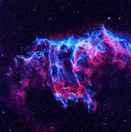 cwnl:  Eastern Veil Distance: 2,600 light years away The Eastern Veil (NGC 6992) is a supernova remnant that is part of a larger complex that includes the Western Veil (NGC 6960).  It is estimated that the supernova explosion occured about 10,000 years ago, before the age of recorded history.  During a star's life, nuclear fusion produces elements such as oxygen, silicon, carbon, and iron.  These elements are expelled into space during supernova explosions, later to become part of other stars, planets, and lifeforms like ourselves. Copyright: Martin Pugh