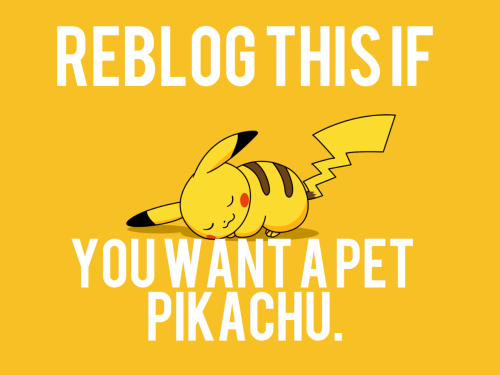 pokeymanzplz:  ask-cewestia:  ((I would cuddle with it FOREVER.))….But a Raichu would be even better ;D  AAAA DO WAAANT ;__; <3