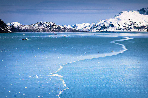 Alaska Cruising (by Clickr Bee)