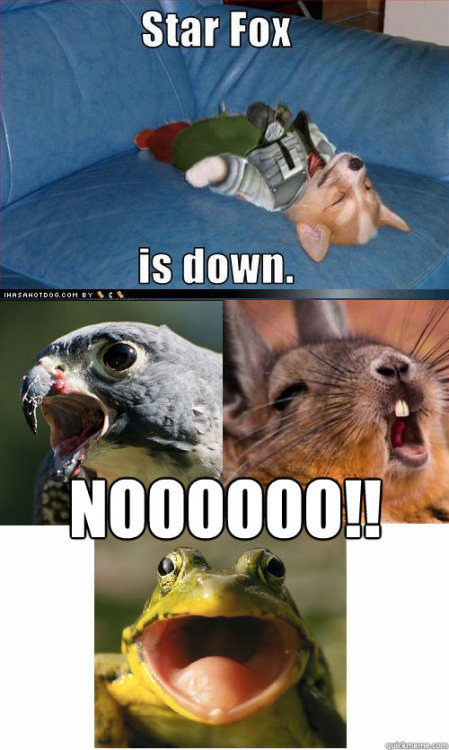 epic4chan:  Star Fox is down  画