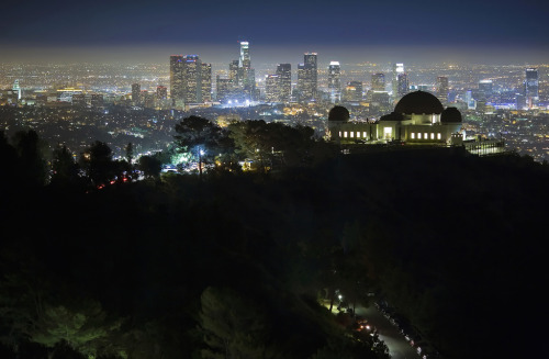 caringforapathy:  LA Night Scene by airbutchie on Flickr