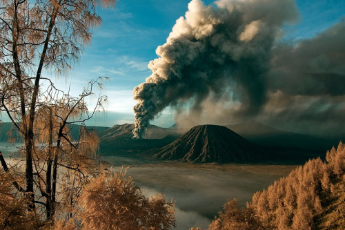 lori-rocks: Mount Bromo  by Yaman Ibrahim