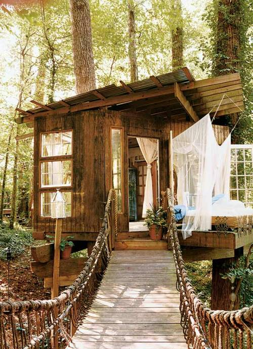 naive-kids:  brunette-beaches:  WHY IS MY TREEHOUSE ON TUMBLR, AHHH STALKERS!!!  (via imgTumble)