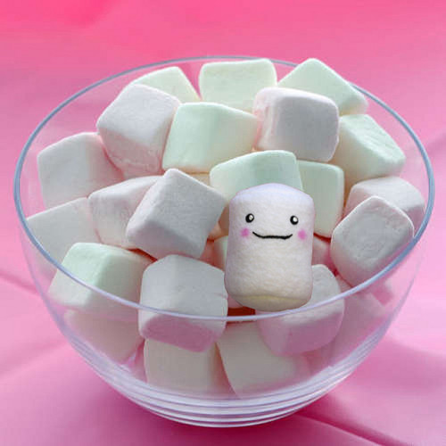 Marshmallow by Tygra Beaumont on Flickr.