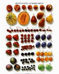 Periodic table of summer fruit