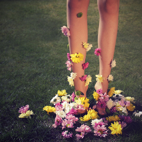 hellanne:  Bloom (by Chloe Elizabeth Dill)