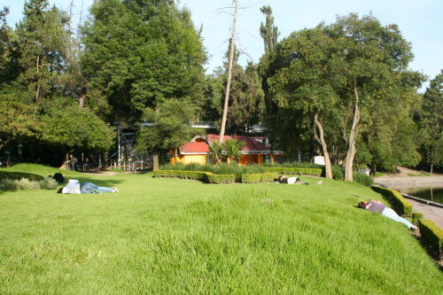 TRAVEL UPDATE: Back in Mexico City Latin lovers litter the lawn in Mexico City's Chapultepec Park. Ah, summer love.