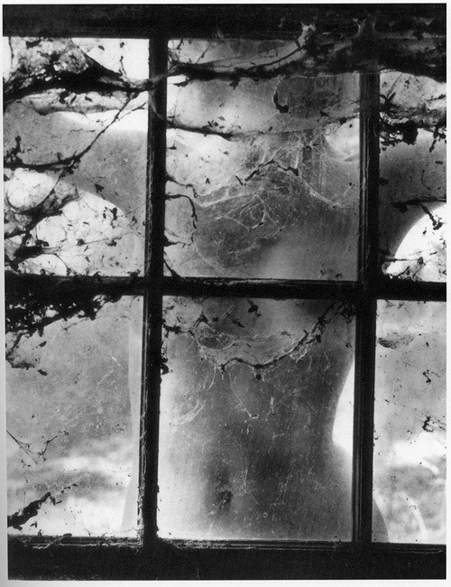 Nude behind Cobwebbed Window by Wynn Bullock in 1955. Wynn Bullock was a consummate practitioner of the craft of photography, using the tools of his trade to express himself with eloquence. He is not easily placed within his chosen field, however, as he kept challenging and redefining the medium. He reminds me of Francesca Woodman I haven't really posted much of either of these photographers, but I will in nearest future so do compare and tell me what you think.