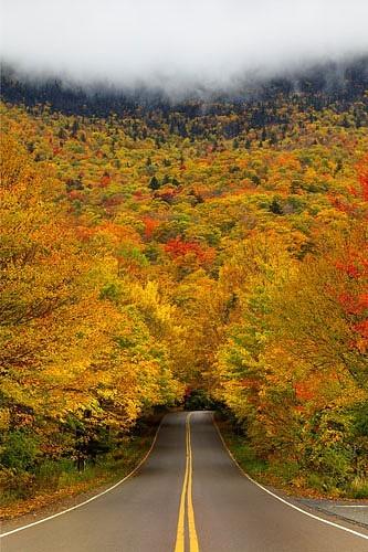 dyingofcute:  Smuggler's Notch State Park, Vermont