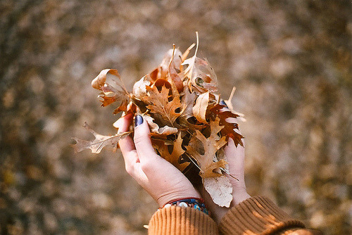 close autumn :)