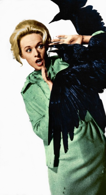 beautyandterrordance:  Tippi Hedren in a promo shot for Alfred Hitchcock's The Birds.