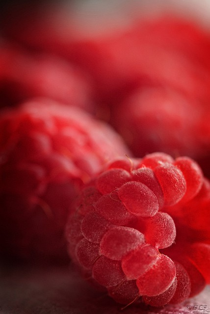 Beautiful Red Raspberries