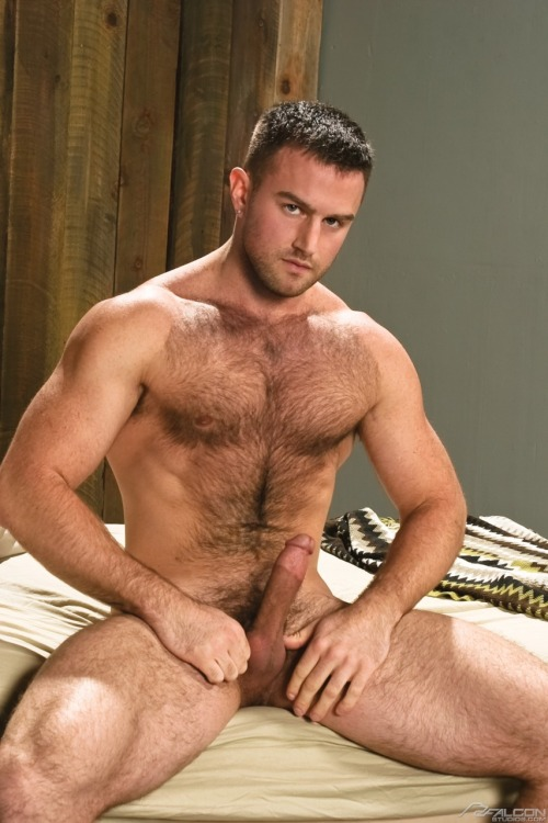 HunkDude: ♂   Cute, perfect dick, even if it's cut. Nice fur, too. Wanna swordfight?