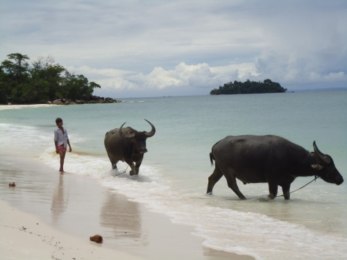 photo by Marionbetta- Koh Rong island - Cambodia - Summer 2011
