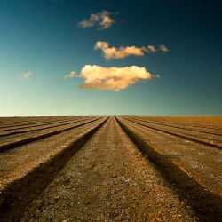 Field and Blue Sky by Paul McGee   (Beautiful Nature Photos)