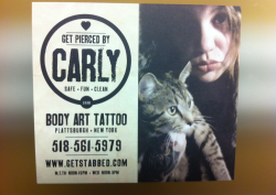 my new business cards came in the mail today (pictured: front & back)