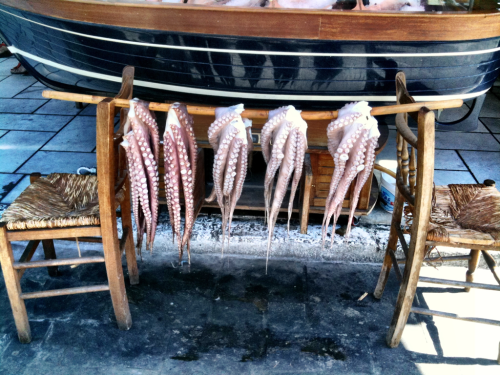 Ask for the catch of the day in Naxos, Greece (but none 4 me, thanks)!