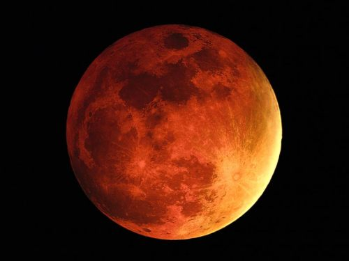 christowitch:  The Blood Moon!October's full moon is often referred to as the Full Hunter's Moon, Blood Moon, or Sanguine Moon. Many moons ago, Native Americans named this bright moon for obvious reasons. The leaves are falling from trees, the deer are fattened, and it's time to begin storing up meat for the long winter ahead. Because the fields were traditionally reaped in late September or early October, hunters could easily see fox and other animals that come out to glean from the fallen grains.This moon is also called the Shedding Moon or the Falling Leaf Moon. Coming right before Samhain, it's a time when the nights are crisp and clear, and you can sense a change in the energy around you.Correspondences:  Colors: Dark blue, black, purples, Deep Blue Green Scents: strawberry, apple blossom, and cherry Gemstones: Obsidian, amethyst, tourmaline, opal, beryl, turquoise Herbs: Apple blossom, pennyroyal, mint family, catnip, Sweet Annie, thyme, catnip, uva ursi, angelica, burdock Flowers: Calendula, marigold, cosmos Trees: Apples, yew, cypress, acacia Birds: Heron, crow, and robin Animals: Stag, jackal, elephant, ram, scorpion Gods: Herne, Apollo, Cernunnos, Mercury, Ishtar, Astarte, Demeter, Kore, Lakshmi, The Horned God, Belili, Hathor Nature Spirits: Frost and plant faeries Powers/Advice: A time to work on inner cleansing, letting go karma, reincarnation, justice and balance. Element: Air This is the time when the veil between our world and the spirit world are at its thinnest. Use this time for spiritual growth — if there's a deceased ancestor you wish to contact, this is a great month to do it. Hold a séance, work on your divination, and pay attention to messages you get in your dreams.Probably because of the threat of winter looming close, the Hunter's Moon is generally accorded with special honor, historically serving as an important feast day in both Western Europe and among many Native American tribes.The Hunter's moon focuses around connecting with animals, and our animal totems and guides. Those who practice looking at the degrees of the lunar cycle may realize that this is the last time the moon will be at a later degree. This conjunction will allow many to look at life differently every time the new moon approaches and allowing us to look at past and the future at the same time.This moon also forces us to look at love completely differently and ask the question: What is love? Is the love you have unconditional? That love does not have to be just in the areas of relationship but also our interaction with people, it can even be love of work and things you have acquired. Additionally it means to be able to let it go of someone or something no matter how much you love it because it needs to be set free. The past years have reminded us that changes need to happen that this kind of life is no longer tolerant and peaceful. We will be reminded once again we can no longer walk in other people's shadows.Because this moon focuses around our animal nature, some of us may become very aggressive in what we say or do. It may cause many people to act out. This type of moon has been known for violence, suicides and domestic disputes over things that may or not exist - another reason it is known as the blood moon.