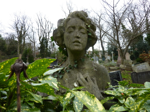 Head and shoulders above…  In Highgate Cemetery.  I'm so in love with Highgate Cemetery.