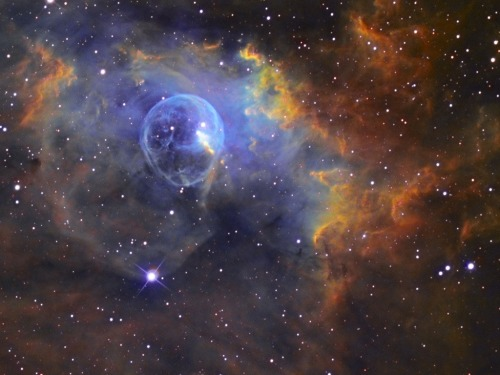 "sneakystratus:  NGC 7635, also called the Bubble Nebula, Sharpless 162, or Caldwell 11, is a H II region emission nebula in the constellation Cassiopeia. It lies close to the direction of the open cluster Messier 52. The ""bubble"" is created by the stellar wind from a massive hot, 8.7[2] magnitude young central star, the 15 ± 5 M☉SAO 20575 (BD+60 2522). The nebula is near a giant molecular cloud which contains the expansion of the bubble nebula while itself being excited by the hot central star, causing it to glow. It was discovered in 1787 by Friedrich Wilhelm Herschel. The star SAO 20575 or BD+602522 is thought to have a mass of 10-40 Solar masses.  goodnight/ good morning starstuffroos <3"