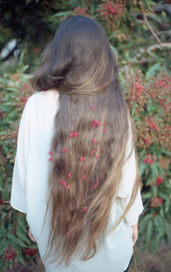 g-eeee:  i want my hair ^this long.
