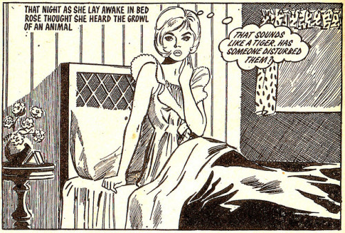 hoodoothatvoodoo:  True Life Romance no 531. 1966, artist unknown.